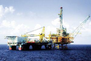 PV Drilling: Tự tin vươn tầm quốc tế