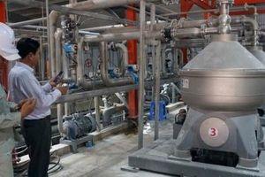 Ứng dụng công nghệ hiện đại trong sản xuất tinh bột mì tại Tây Ninh