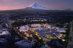 Toyota tiết lộ kế hoạch xây dựng mẫu 'thành phố của tương lai'