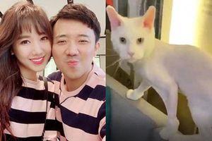 Hari Won khiến Trấn Thành sốc nặng, lập tức bị bắt 'ra tòa' hỏi tội vì điều này