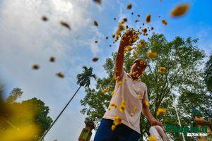 Khám phá nghề làm hoa cúc khô truyền thống ở Hưng Yên