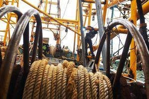 Bình Định báo cáo Thủ tướng vụ việc ngư dân không mua được bảo hiểm
