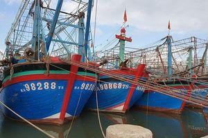 Sớm bán bảo hiểm cho ngư dân Hoàng Mai