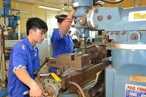 TPHCM: Năm 2020 đào tạo nghề cho hơn 6.000 lao động nông thôn