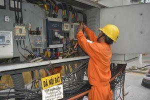 Điện lực Bình Định không cắt điện trong dịp Tết Nguyên đán 2020