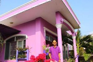 Đầu năm, ghé thăm nhà lão nông có sở thích màu tím 'quái lạ'!