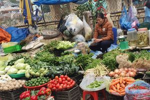 Mùng 4 Tết: Rau xanh, thủy hải sản tại Hà Nội tăng giá mạnh