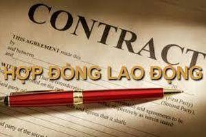 Góp ý kiến hoàn thiện chế định hợp đồng trong dự thảo sửa đổi Bộ luật Lao động năm 2012 dưới góc nhìn khoa học pháp lý