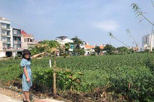 Khởi động dự án Khu công viên ao cá phường 2, TP.Vũng Tàu