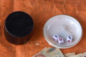 Khởi tố 11 đối tượng đánh bạc trong rẫy cà phê