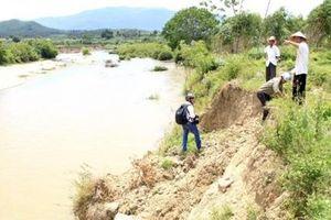 Bình Định đề nghị điều tiết nước thủy điện hỗ trợ chống hạn