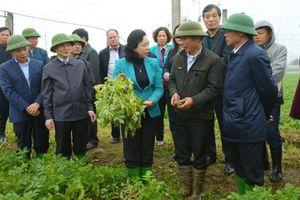 Năm 2020, huyện Thạch Thất phải đạt chuẩn nông thôn mới