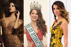 Hoa khôi Đoàn Hồng Trang thi Miss Eco International 2020