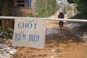 Hà Nội không để dịch cúm gia cầm ở Chương Mỹ lây lan diện rộng