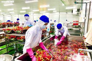 Nhiều doanh nghiệp 'đói' hàng, nông sản được 'đẩy' đi bằng đường biển