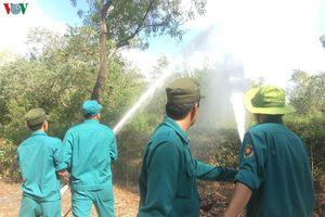 Vườn chim Bạc Liêu nguy cơ cháy rừng ở cấp cực kỳ nguy hiểm