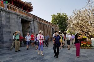 Ngành du lịch Thừa Thiên Huế nỗ lực vượt khó