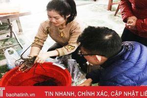 Hải sản 'hạng sang' giảm giá 'sốc', người dân Hà Tĩnh nhanh tay thưởng thức!