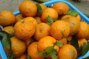 Hoa quả, nước uống giàu vitamin C 'cháy hàng' mùa dịch Covid-19