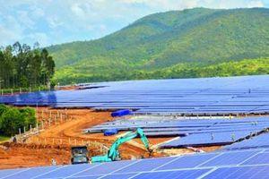 Loạt dự án điện mặt trời chờ phê duyệt đầu tư tại Gia Lai