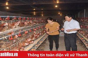 Nông dân huyện Thường Xuân đoàn kết giúp nhau phát triển kinh tế