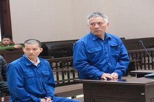 Giảm án cho hai bị cáo người ngoại quốc trong đường dây tổ chức mang thai hộ