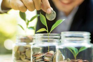 Bốn câu hỏi về lãi suất chiết khấu khi định giá doanh nghiệp