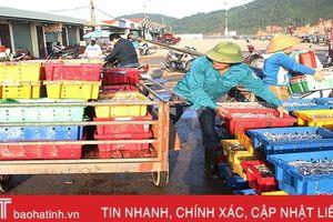 Mùa cá cơm trên biển Hà Tĩnh