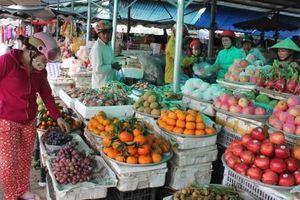 Chú trọng sản xuất trái cây bản địa cho thị trường nội địa