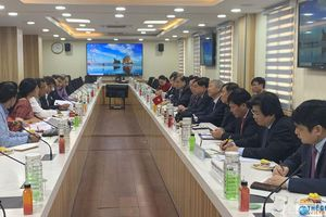 Việt Nam-Ấn Độ thúc đẩy thương mại thông qua đầu tư