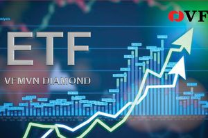VFM sắp IPO quỹ ETF dựa trên chỉ số Vietnam Diamond Index