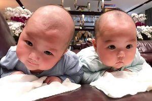 Những cặp sinh đôi nhà sao Việt