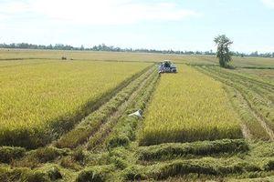 Xây dựng nông thôn mới gắn với Đề án tái cơ cấu nông nghiệp