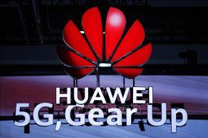 Huawei thử nghiệm ứng dụng tìm kiếm riêng thay thế Google Search