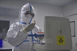 Giới khoa học Trung Quốc xác định virus SARS-CoV-2 có hai loại
