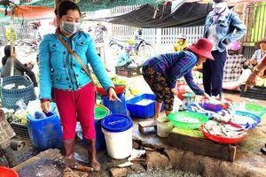 Ngôi chợ ô nhiễm trầm trọng tại Phú Yên