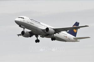 Hàng không châu Âu đình chỉ nhiều chuyến bay từ vùng dịch