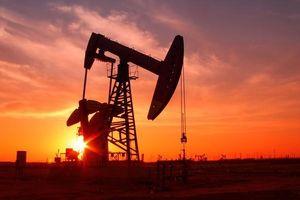 Giá dầu giảm hơn 20% trước nguy cơ chiến tranh về giá giữa Nga và Saudi Arabia