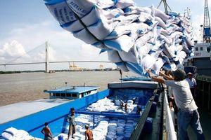 Doanh nghiệp xuất khẩu gạo tập trung bình ổn giá trong nước