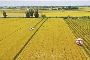 Nông dân thi đua phát triển sản xuất, xây dựng nông thôn mới