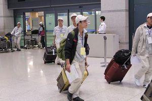 Dịch Covid-19 phức tạp, Hàn Quốc cho phép lao động bất hợp pháp khai báo online