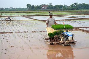 Chủ động lấy và giữ nước trên ruộng