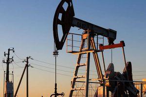 'Tiếp bước' Saudi Arabia, ba thành viên OPEC khác giảm giá dầu
