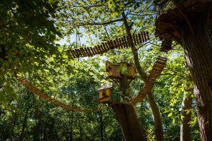 Anh: Xuất hiện công viên giải trí rừng cây trị giá 5 triệu bảng trong năm 2020