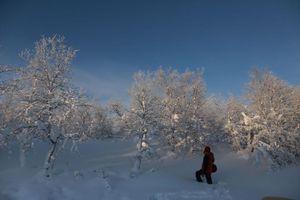 Mùa đông đẹp như cổ tích ở thành phố lớn nhất vòng Bắc Cực