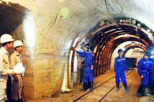 Các mỏ cần công nhân, Cao đẳng nghề Than - Khoáng sản làm chậm chạp?