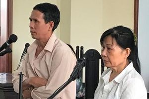 Mượn tiền kinh doanh lúa gạo không trả, vợ chồng vào tù