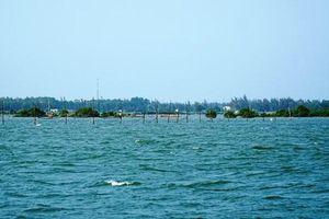 Quảng Nam: Dự án gần 200 tỷ đồng 'đứng bánh' vì… rớ cá