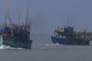 Nhảy từ tàu cá, 2 thuyền viên được tàu cào lưới cứu