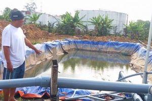 Dịch vụ cấp nước ngọt cứu khát cho sầu riêng